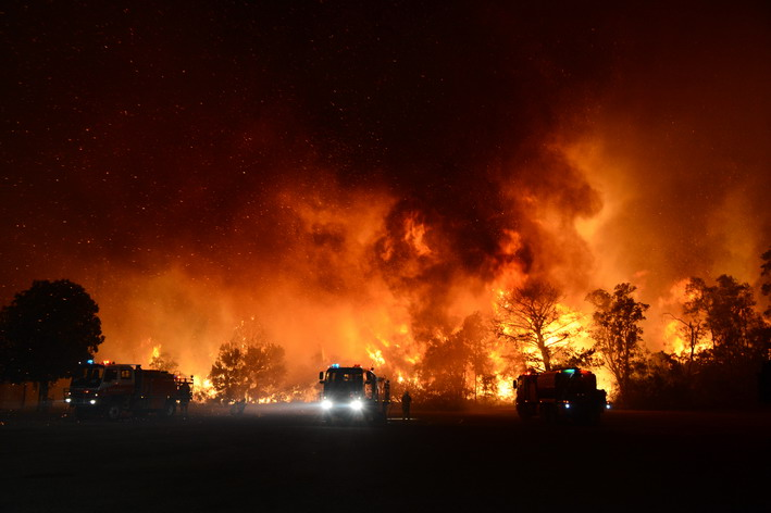 wild bush fire and fire trucks at night