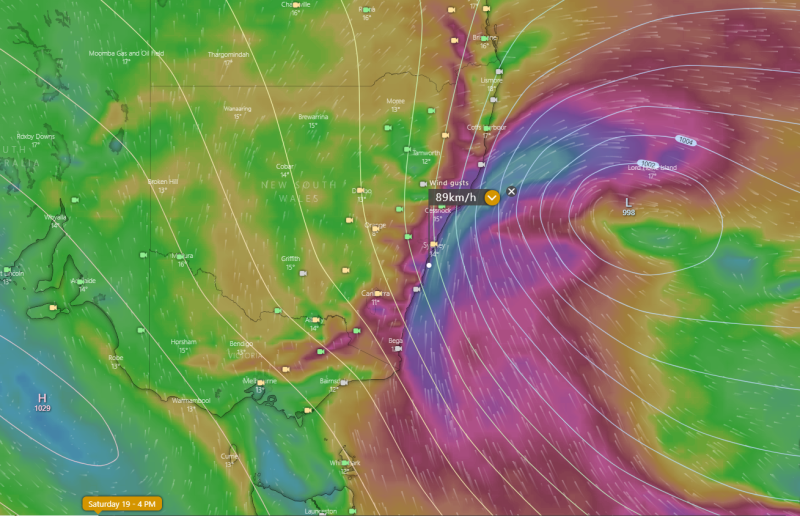 Image 1: Wind gust forecast and mean sea level pressure for 4pm Saturday, 18 June, 2021 (Source: Windy.com)